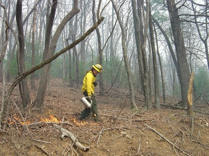 Prescribed Fire to Burn 1,600 Acres in Burke and Rutherford Counties