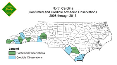 Wildlife Commission Maps Armadillos Expanding Range In North Carolina